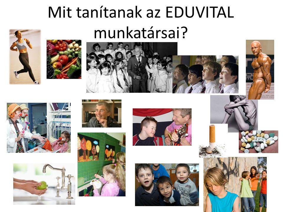 Az EDUVITAL főbb tevékenységei OKTATÁS  Semmelweis Egyetem Egészségtudományi Kar (4.