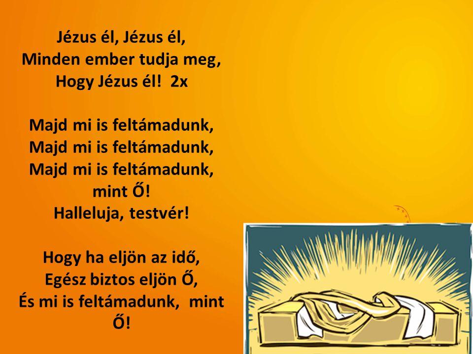 Jézus él, Minden ember tudja meg, Hogy Jézus él! 2x Majd mi is feltámadunk, mint Ő! Halleluja, testvér! Hogy ha eljön az idő, Egész biztos eljön Ő, És