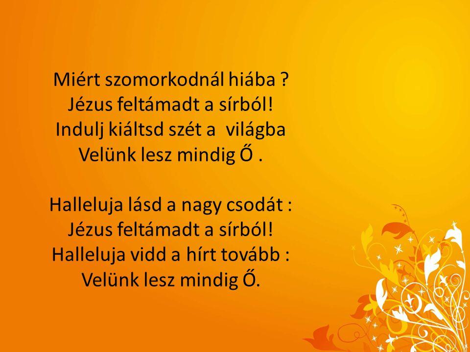 Miért szomorkodnál hiába ? Jézus feltámadt a sírból! Indulj kiáltsd szét a világba Velünk lesz mindig Ő. Halleluja lásd a nagy csodát : Jézus feltámad