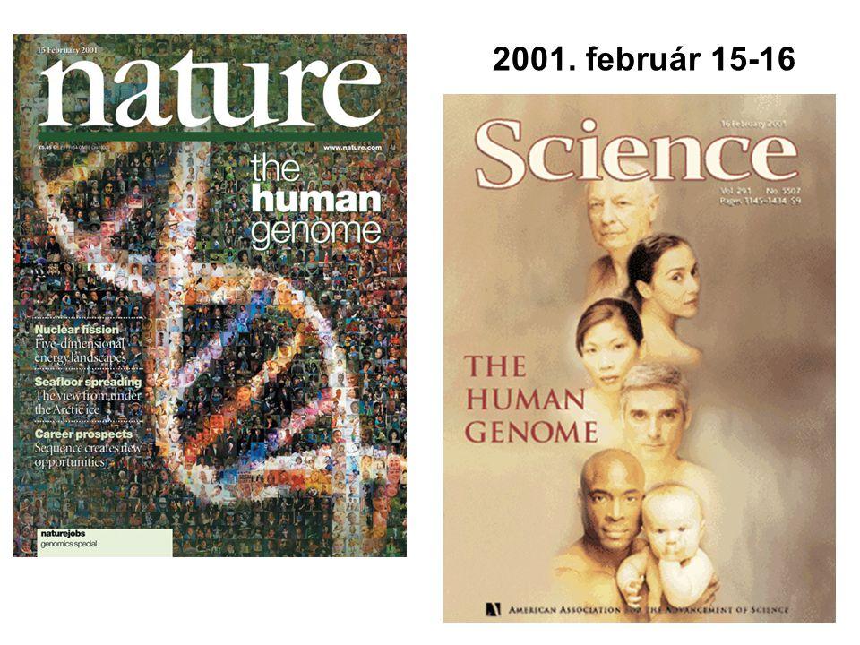 2001. február 15-16