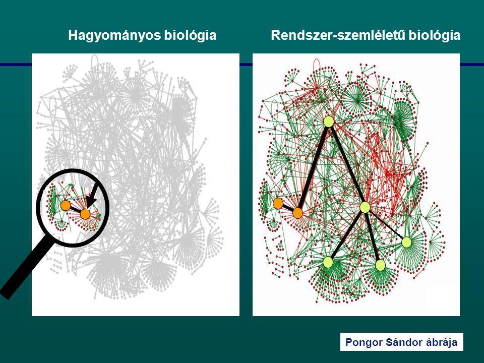 Pongor Sándor ábrája Hagyományos biológia Rendszer-szemléletű biológia