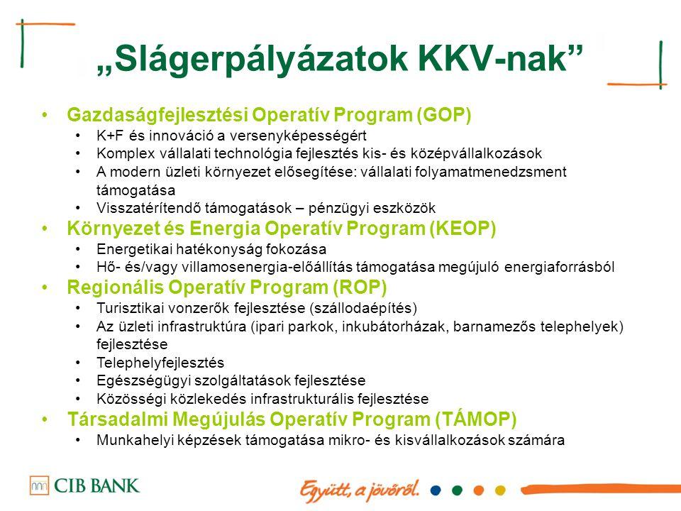 """""""Slágerpályázatok KKV-nak"""" Gazdaságfejlesztési Operatív Program (GOP) K+F és innováció a versenyképességért Komplex vállalati technológia fejlesztés k"""