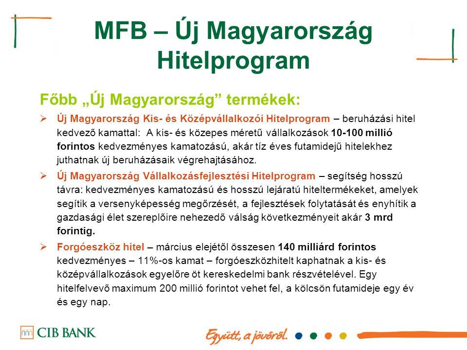 """MFB – Új Magyarország Hitelprogram Főbb """"Új Magyarország"""" termékek:  Új Magyarország Kis- és Középvállalkozói Hitelprogram – beruházási hitel kedvező"""