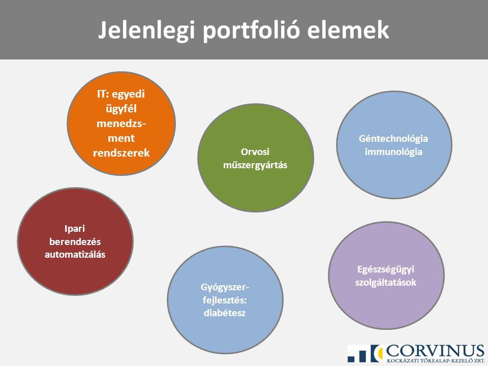 Siker kritériumok Jelentős piaci részesedés és/vagy növekedés Sikeres termék vagy szolgáltatás portfolió Jól kiválasztott, korszerű technológia Megfelelő üzleti stratégia és üzleti modell Motivált menedzsment Iparági tapasztalat Erős és/vagy gyorsan növekvő cash-flow