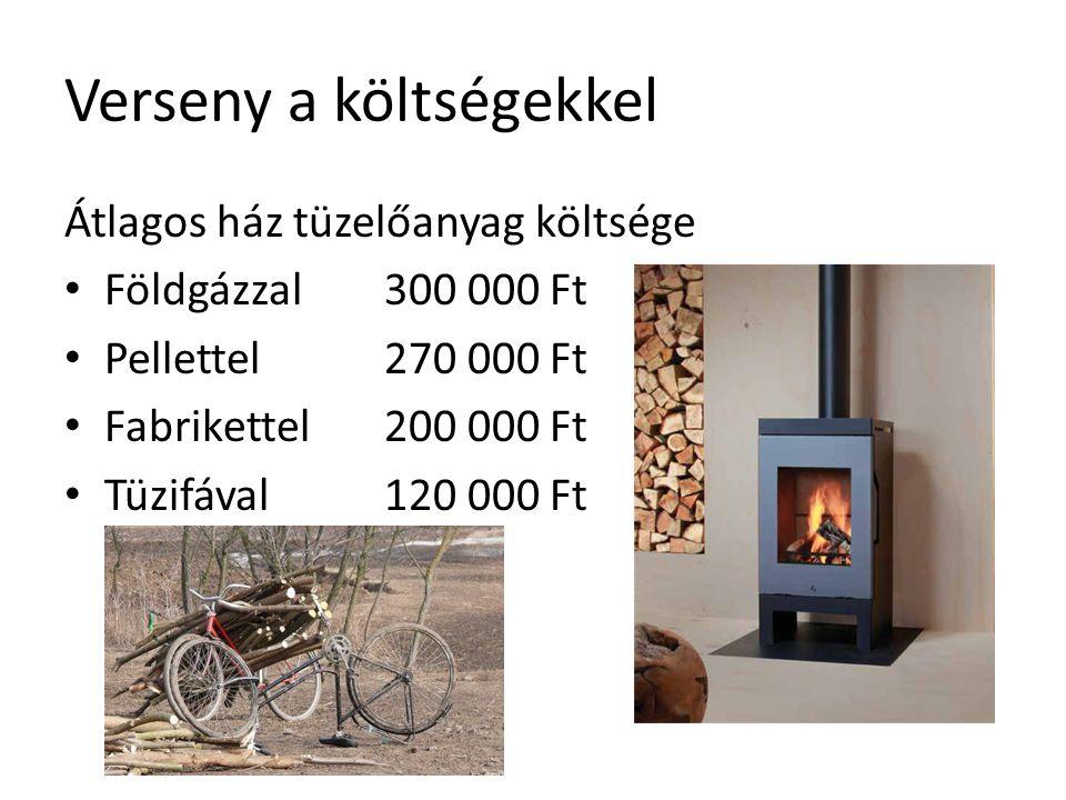 Átlagos ház tüzelőanyag költsége Földgázzal 300 000 Ft Pellettel270 000 Ft Fabrikettel200 000 Ft Tüzifával120 000 Ft Verseny a költségekkel