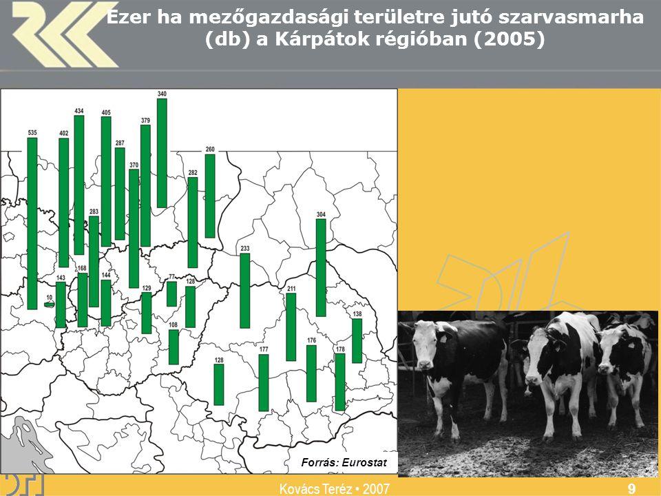 MTA Regionális Kutatások Központja Kovács Teréz 2007 9 Ezer ha mezőgazdasági területre jutó szarvasmarha (db) a Kárpátok régióban (2005) Forrás: Eurostat