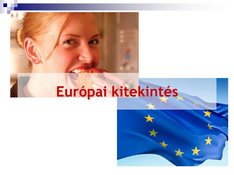 Európai kitekintés