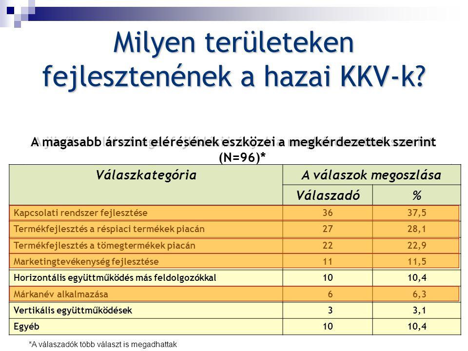 Milyen területeken fejlesztenének a hazai KKV-k? VálaszkategóriaA válaszok megoszlása Válaszadó% Partnerkör szélesítése4546,9 Termékfejlesztés a tömeg