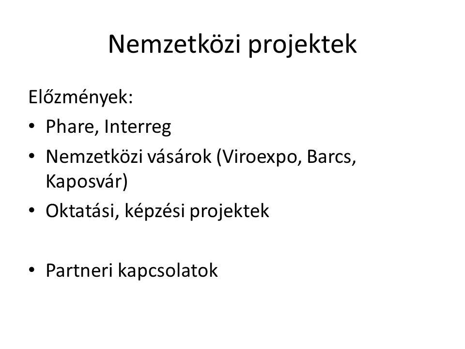Nemzetközi projektek Előzmények: Phare, Interreg Nemzetközi vásárok (Viroexpo, Barcs, Kaposvár) Oktatási, képzési projektek Partneri kapcsolatok