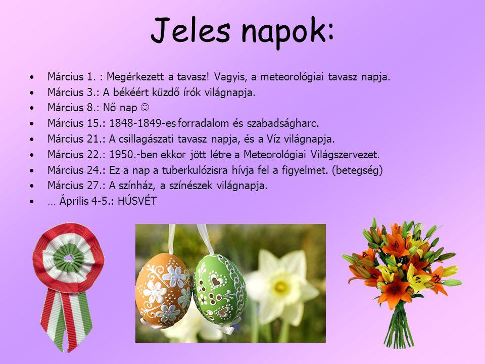Jeles napok: Március 1.: Megérkezett a tavasz. Vagyis, a meteorológiai tavasz napja.