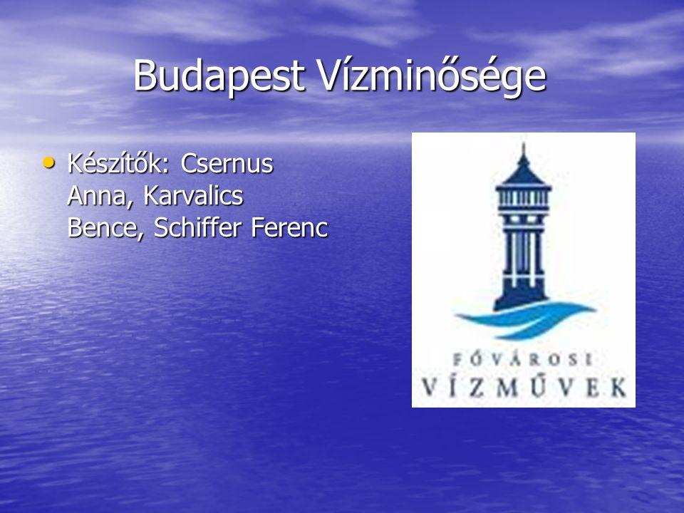 Víz minősége Társaságunk nemzetközi összehasonlításban is kiváló minőségű vizet szolgáltat Budapest és számos környező település lakosainak.