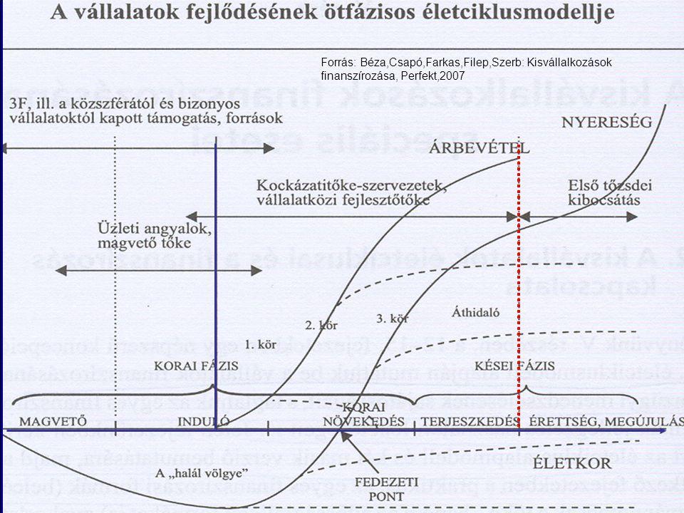 Bevezetés – kiemelt területek BME - Pénzügyek Tanszék 2 Forrás: Béza,Csapó,Farkas,Filep,Szerb: Kisvállalkozások finanszírozása, Perfekt,2007