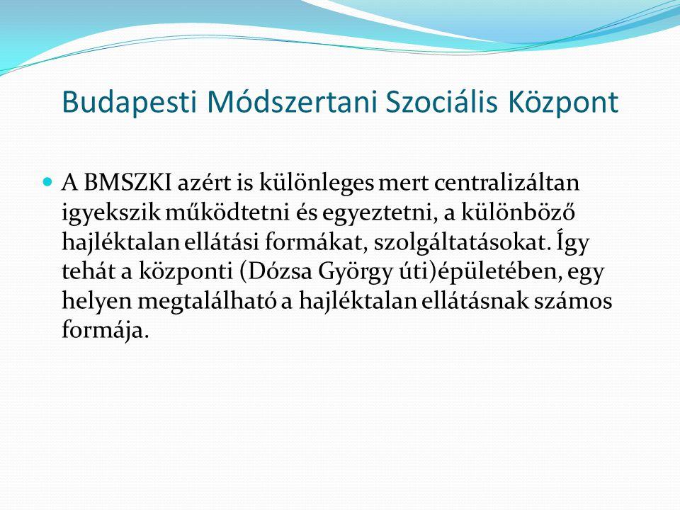 Budapesti Módszertani Szociális Központ A BMSZKI azért is különleges mert centralizáltan igyekszik működtetni és egyeztetni, a különböző hajléktalan e