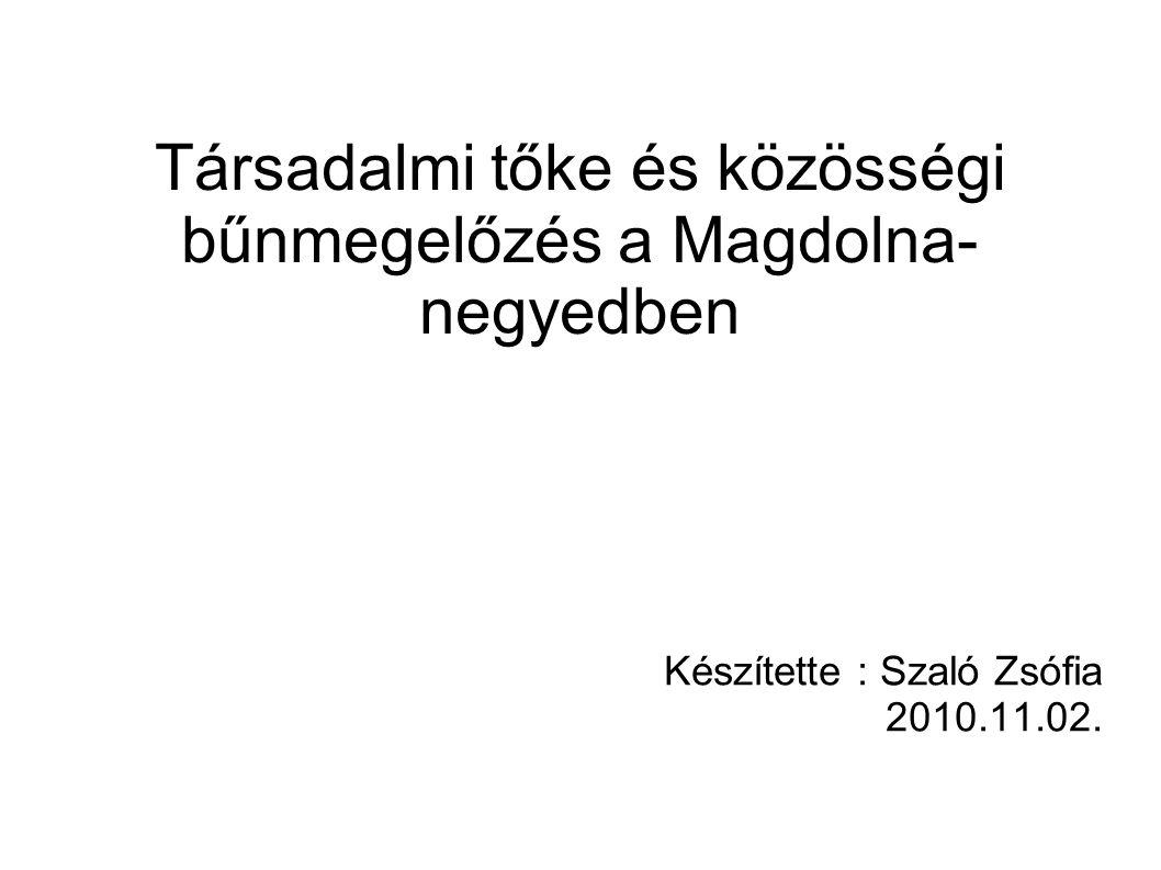 Társadalmi tőke és közösségi bűnmegelőzés a Magdolna- negyedben Készítette : Szaló Zsófia 2010.11.02.