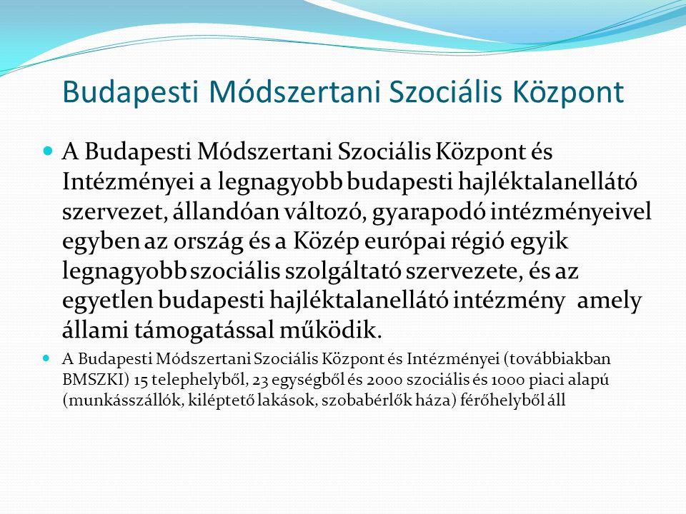 Budapesti Módszertani Szociális Központ A Budapesti Módszertani Szociális Központ és Intézményei a legnagyobb budapesti hajléktalanellátó szervezet, állandóan változó, gyarapodó intézményeivel egyben az ország és a Közép európai régió egyik legnagyobb szociális szolgáltató szervezete, és az egyetlen budapesti hajléktalanellátó intézmény amely állami támogatással működik.