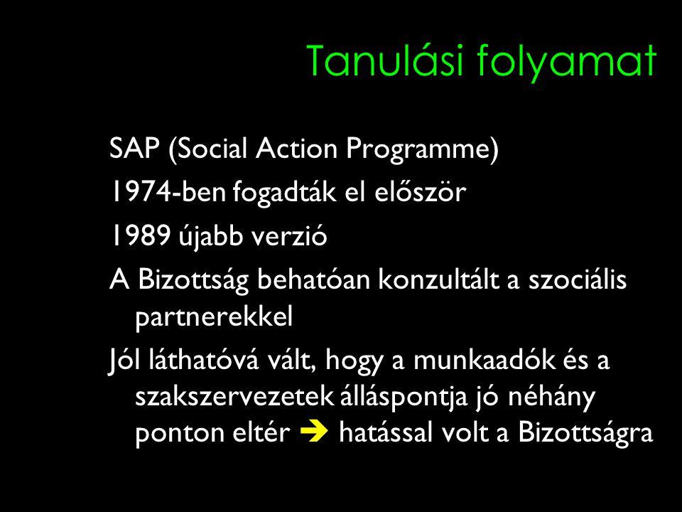 12 Tanulási folyamat SAP (Social Action Programme) 1974-ben fogadták el először 1989 újabb verzió A Bizottság behatóan konzultált a szociális partnerekkel Jól láthatóvá vált, hogy a munkaadók és a szakszervezetek álláspontja jó néhány ponton eltér  hatással volt a Bizottságra