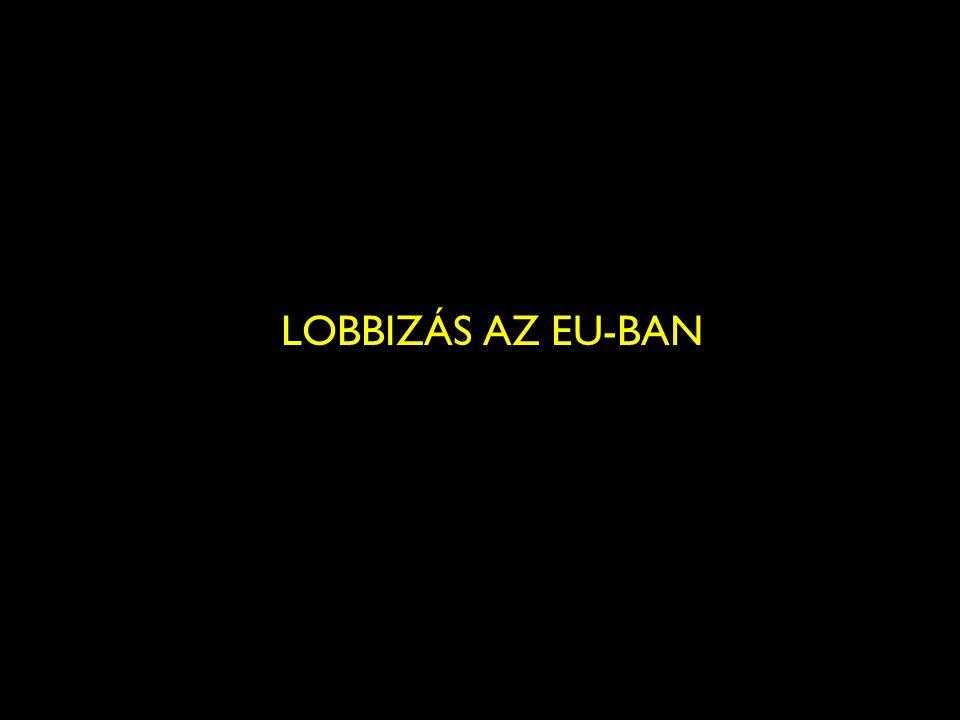13 LOBBIZÁS AZ EU-BAN