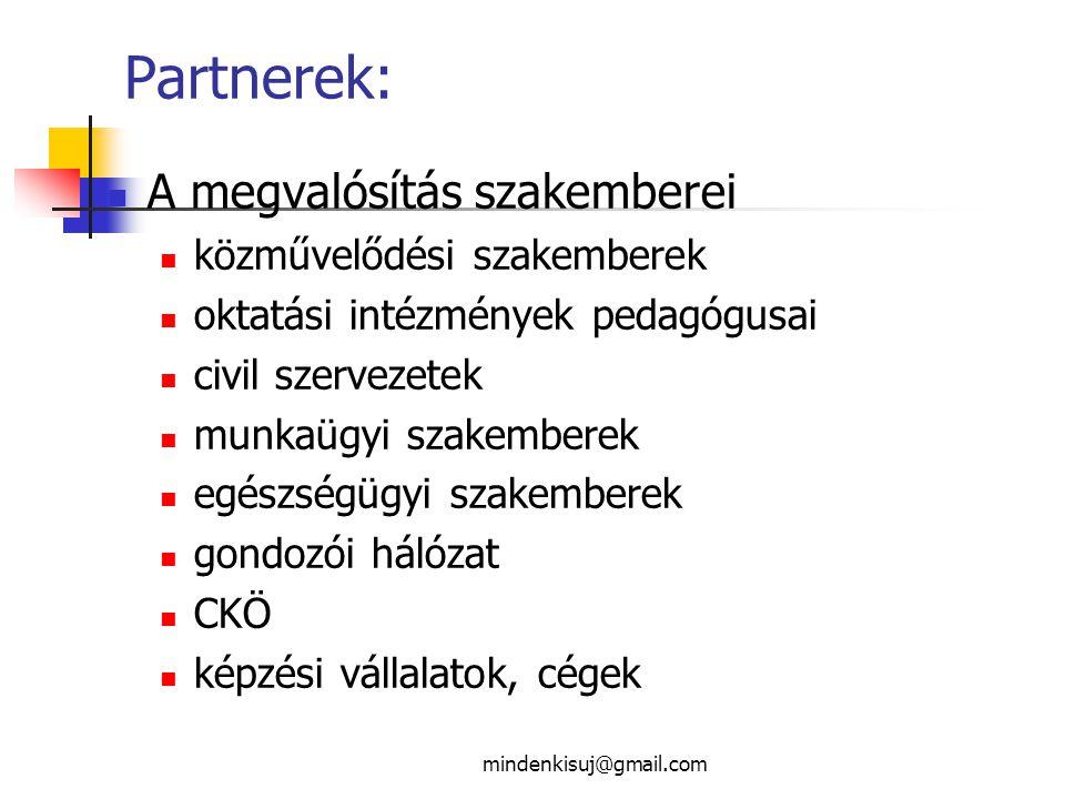 Partnerek: A megvalósítás szakemberei közművelődési szakemberek oktatási intézmények pedagógusai civil szervezetek munkaügyi szakemberek egészségügyi szakemberek gondozói hálózat CKÖ képzési vállalatok, cégek