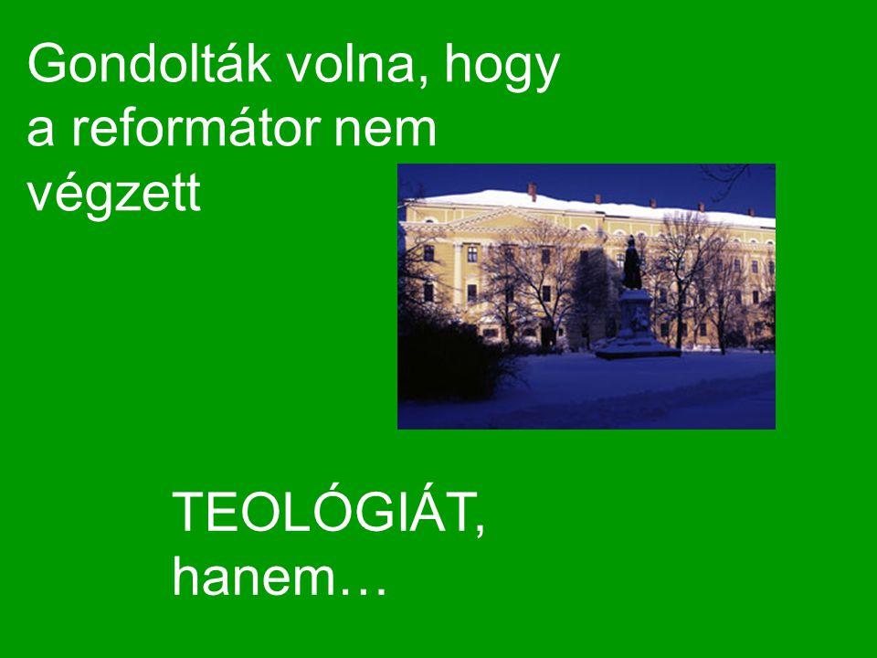 Gondolták volna, hogy a reformátor nem végzett TEOLÓGIÁT, hanem…