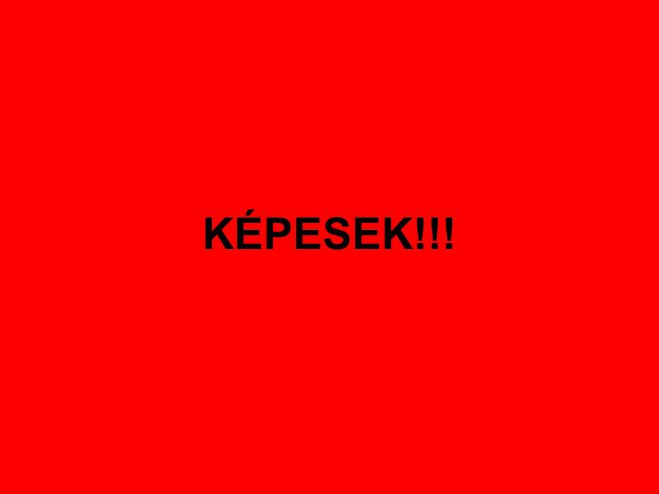 KÉPESEK!!!