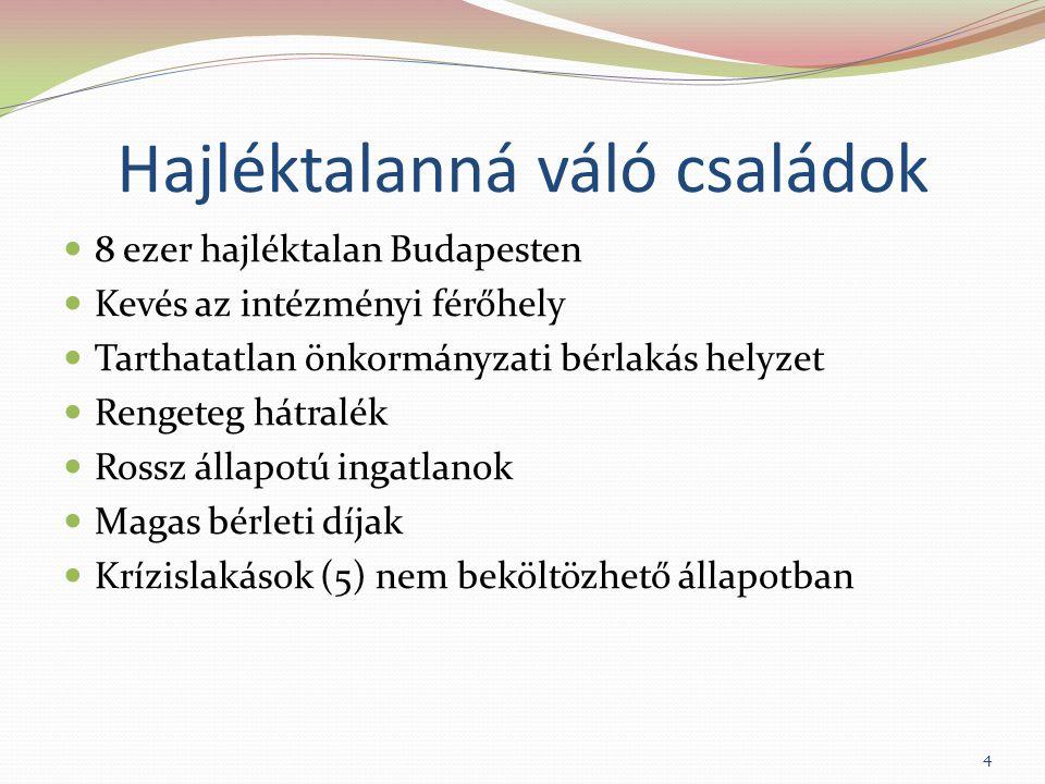Hajléktalanná váló családok 8 ezer hajléktalan Budapesten Kevés az intézményi férőhely Tarthatatlan önkormányzati bérlakás helyzet Rengeteg hátralék Rossz állapotú ingatlanok Magas bérleti díjak Krízislakások (5) nem beköltözhető állapotban 4