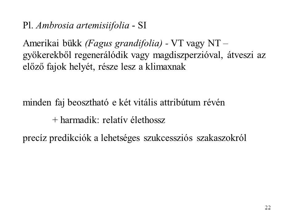 22 Pl. Ambrosia artemisiifolia - SI Amerikai bükk (Fagus grandifolia) - VT vagy NT – gyökerekből regenerálódik vagy magdiszperzióval, átveszi az előző