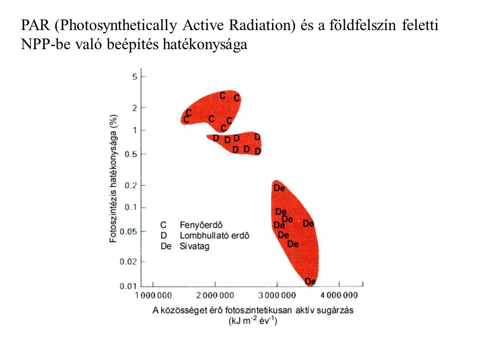 - napsugárzás felléphet limitáló tényezőként a közösség produktivitásában ennek vizsgálatához tudnunk kell, hogy a fényintenzitás növelésével nő-e vagy változatlan marad a produktivitás a nap bizonyos szakaszaiban a fényintenzitás a lombkorona szinten történő fotoszintézis optimuma alatt van maximális fény mellett is levelek homályban C 4 -es növények: napsugárzás telítési intenzitását szinte sosem érik el, így ezek produkcióját limitálhatja a PAR még a legverőfényesebb napokon is