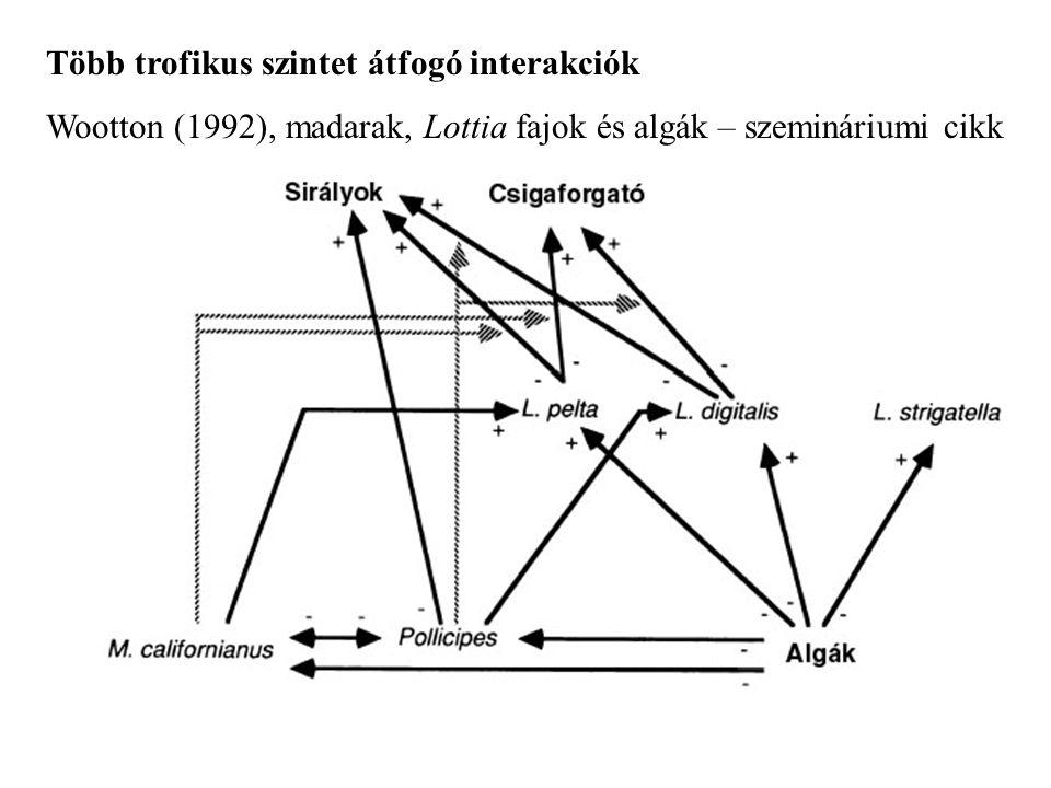 Több trofikus szintet átfogó interakciók Wootton (1992), madarak, Lottia fajok és algák – szemináriumi cikk