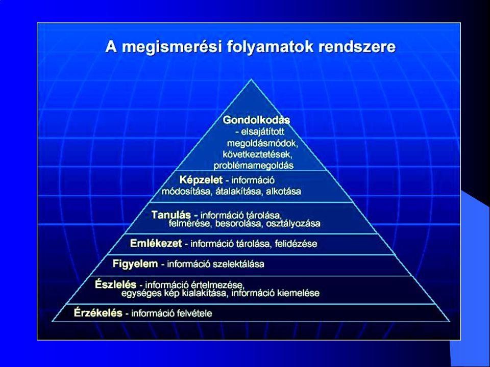 a megismerés legmagasabb szintje új mentális reprezentációt eredményez a problémamegoldásban vagy a fogalomalkotásban az információfeldolgozás szervező, aktív jellegének bizonyítéka