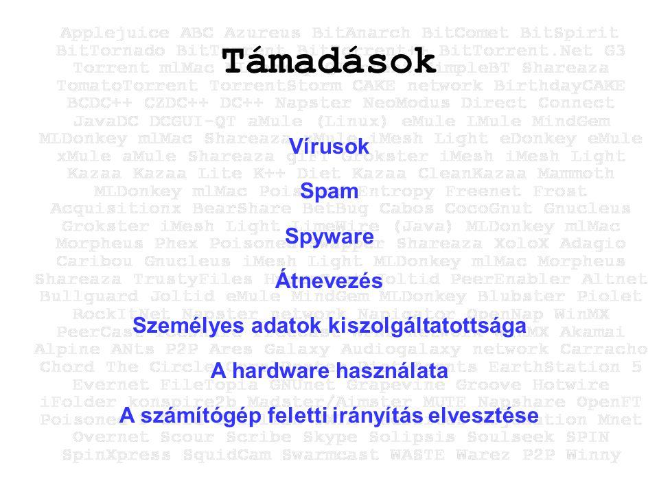 Támadások Vírusok Spam Spyware Átnevezés Személyes adatok kiszolgáltatottsága A hardware használata A számítógép feletti irányítás elvesztése