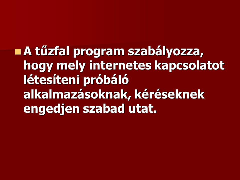 A tűzfal program szabályozza, hogy mely internetes kapcsolatot létesíteni próbáló alkalmazásoknak, kéréseknek engedjen szabad utat. A tűzfal program s
