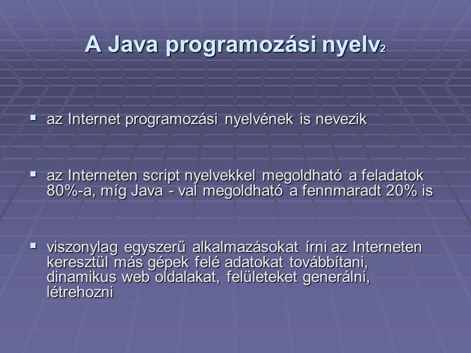 A Java programozási nyelv 2  az Internet programozási nyelvének is nevezik  az Interneten script nyelvekkel megoldható a feladatok 80%-a, míg Java - val megoldható a fennmaradt 20% is  viszonylag egyszerű alkalmazásokat írni az Interneten keresztül más gépek felé adatokat továbbítani, dinamikus web oldalakat, felületeket generálni, létrehozni