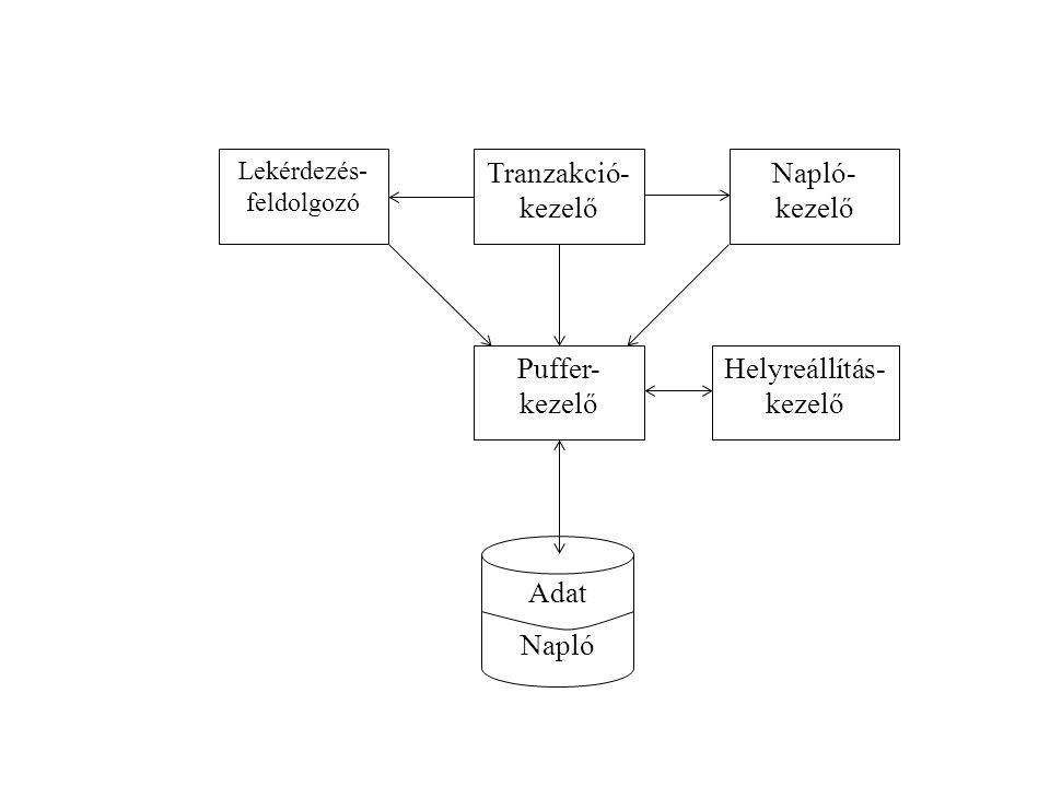 Adatbázis és tranzakció kölcsönhatása Ennek a kölcsönhatásnak három fontos színhelye van:  Az adatbázis elemeit tartalmazó lemezblokkok területe;  A pufferkezelő által használt memóriaterület  A tranzakció memóriaterülete