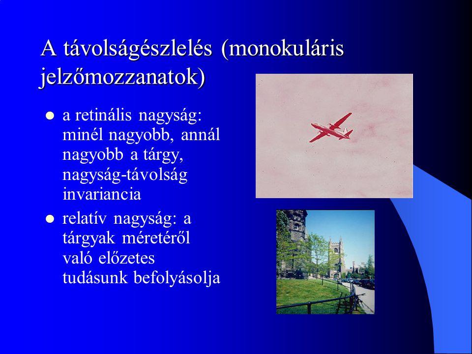 A távolságészlelés (monokuláris jelzőmozzanatok) a retinális nagyság: minél nagyobb, annál nagyobb a tárgy, nagyság-távolság invariancia relatív nagys
