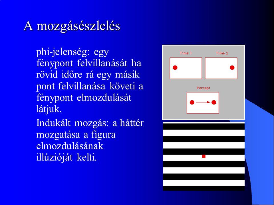 A mozgásészlelés phi-jelenség: egy fénypont felvillanását ha rövid időre rá egy másik pont felvillanása követi a fénypont elmozdulását látjuk. Indukál
