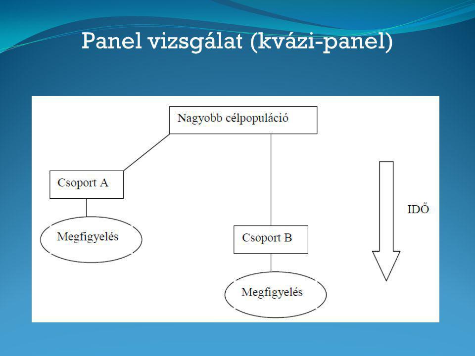 Panel vizsgálat (kvázi-panel)
