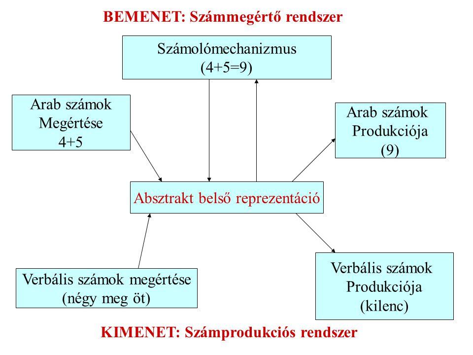 Számolómechanizmus (4+5=9) Absztrakt belső reprezentáció Arab számok Megértése 4+5 Arab számok Produkciója (9) Verbális számok megértése (négy meg öt) Verbális számok Produkciója (kilenc) BEMENET: Számmegértő rendszer KIMENET: Számprodukciós rendszer