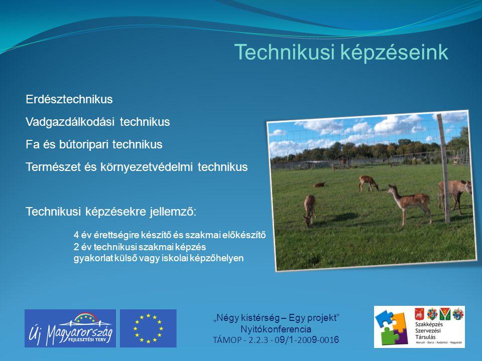 """Technikusi képzéseink """"Négy kistérség – Egy projekt"""" Nyitókonferencia TÁMOP - 2.2.3 - 0 9 / 1 -200 9 -001 6 Erdésztechnikus Vadgazdálkodási technikus"""