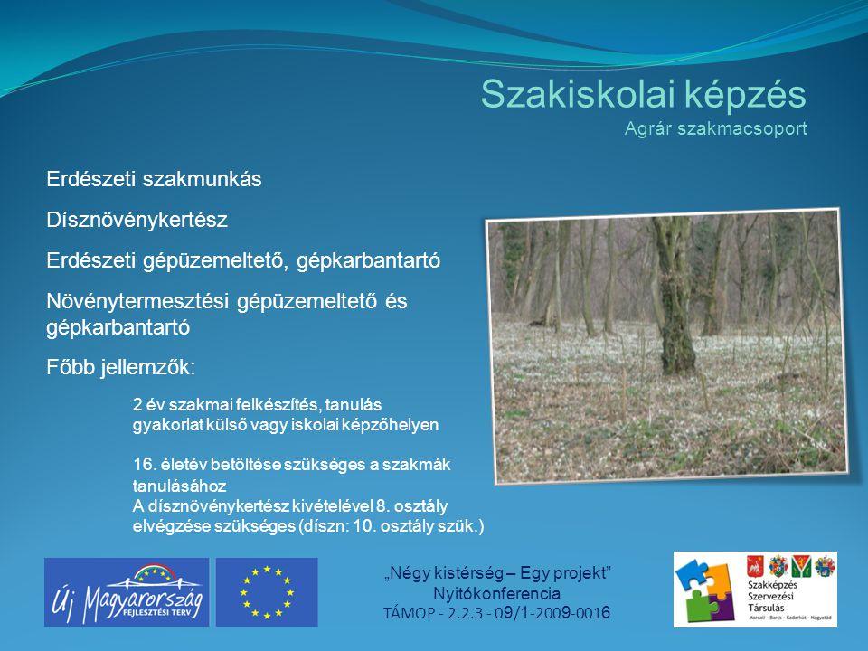 """Szakiskolai képzés Agrár szakmacsoport """"Négy kistérség – Egy projekt"""" Nyitókonferencia TÁMOP - 2.2.3 - 0 9 / 1 -200 9 -001 6 Erdészeti szakmunkás Dísz"""