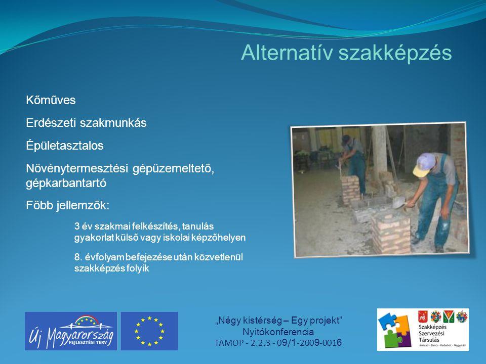 """Alternatív szakképzés """"Négy kistérség – Egy projekt"""" Nyitókonferencia TÁMOP - 2.2.3 - 0 9 / 1 -200 9 -001 6 Kőműves Erdészeti szakmunkás Épületasztalo"""