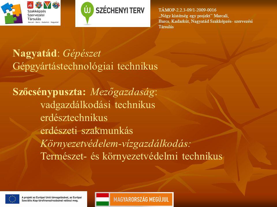"""TÁMOP-2.2.3-09/1-2009-0016 """"Négy kistérség egy projekt Marcali, Barcs, Kadarkút, Nagyatád Szakképzés- szervezési Társulás Nagyatád: Gépészet Gépgyártástechnológiai technikus Szőcsénypuszta: Mezőgazdaság: vadgazdálkodási technikus erdésztechnikus erdészeti szakmunkás Környezetvédelem-vízgazdálkodás: Természet- és környezetvédelmi technikus"""