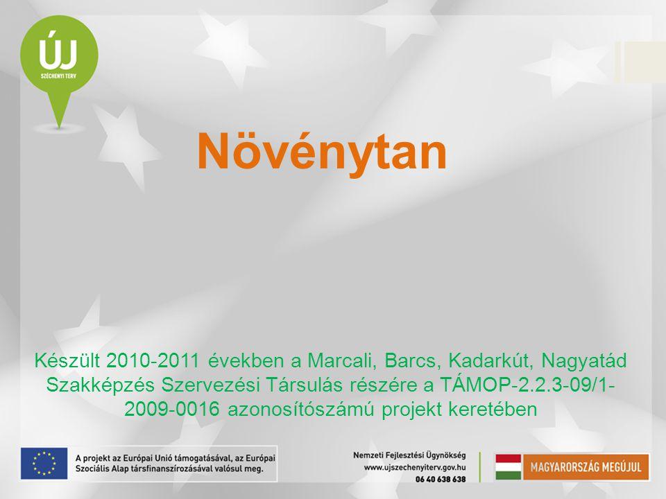 Növénytan Készült 2010-2011 években a Marcali, Barcs, Kadarkút, Nagyatád Szakképzés Szervezési Társulás részére a TÁMOP-2.2.3-09/1- 2009-0016 azonosít