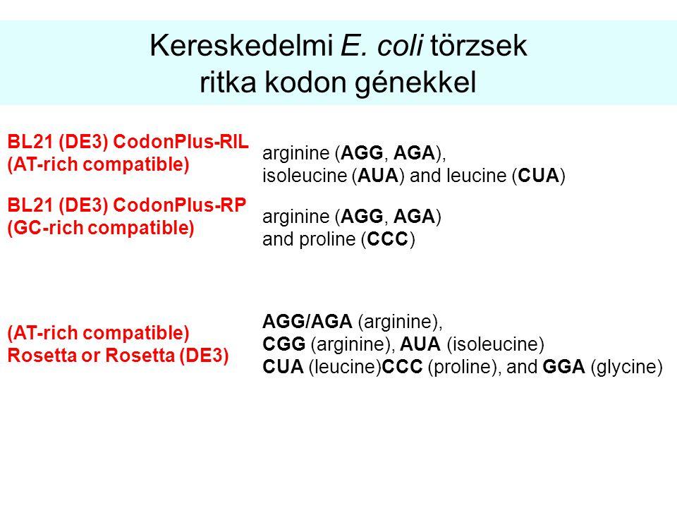 Kereskedelmi E. coli törzsek ritka kodon génekkel BL21 (DE3) CodonPlus-RIL (AT-rich compatible) arginine (AGG, AGA), isoleucine (AUA) and leucine (CUA