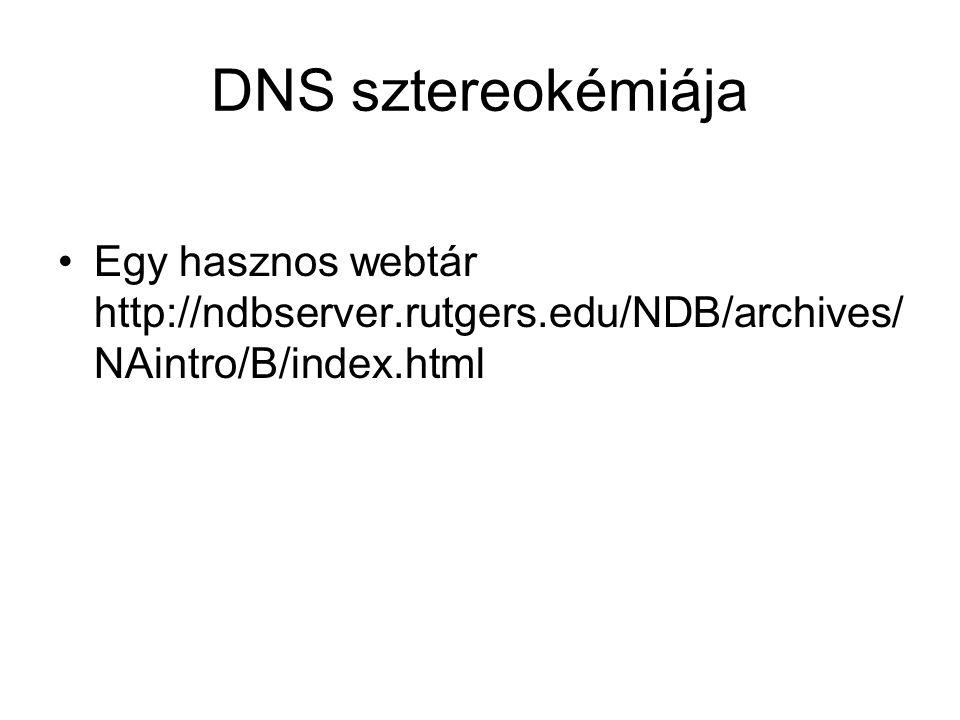 DNS sztereokémiája Egy hasznos webtár http://ndbserver.rutgers.edu/NDB/archives/ NAintro/B/index.html