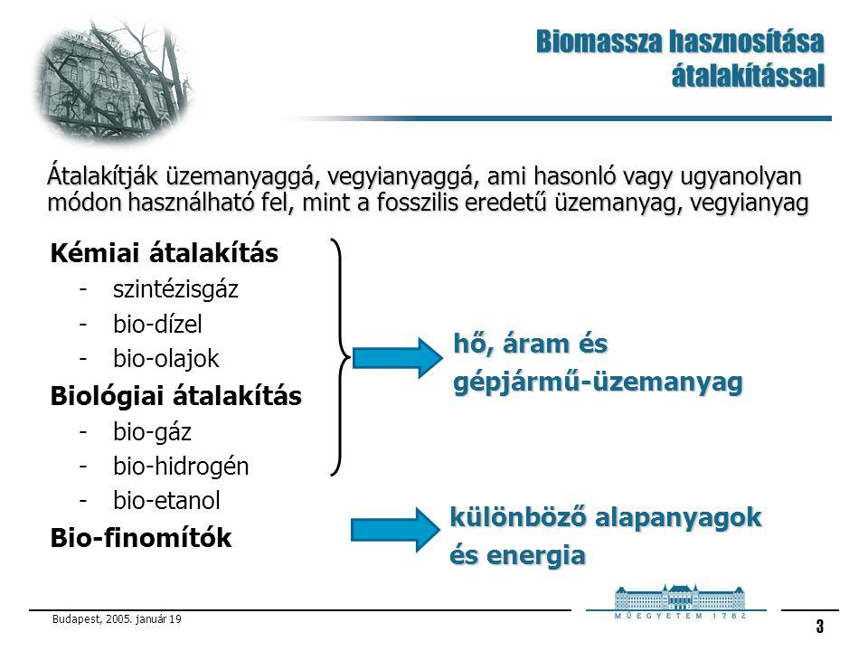 Budapest, 2005.január 19 4 Mi a Biomassza. Minden növényi vagy állati eredetű szerves anyag.