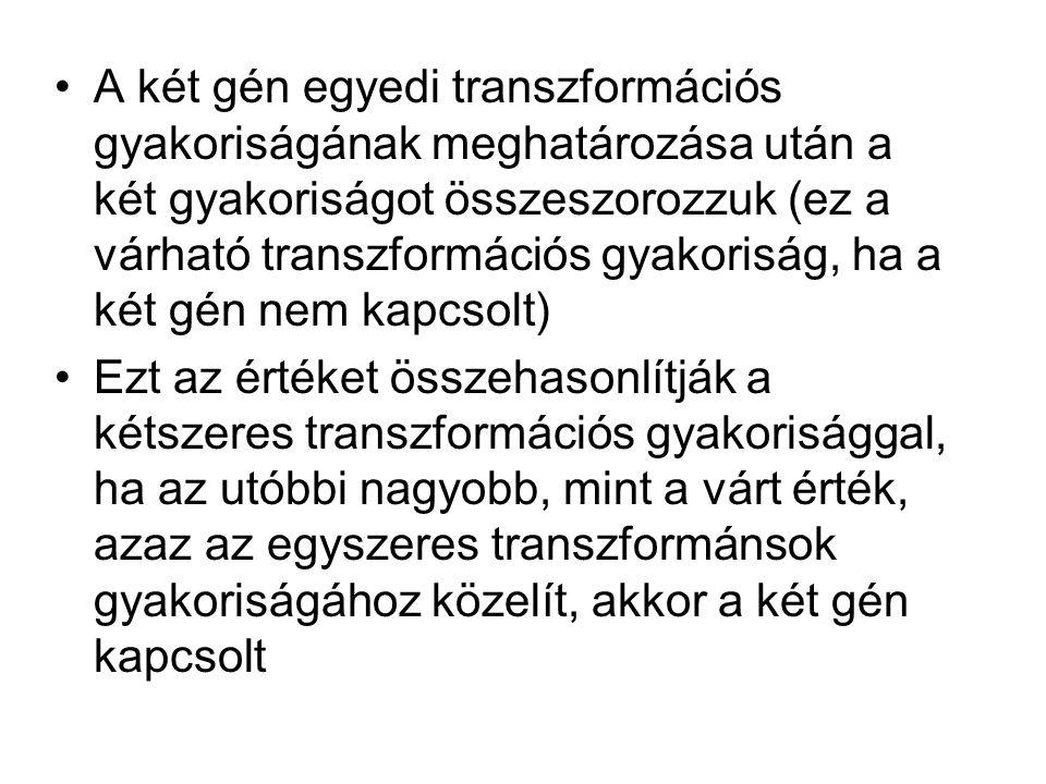 A két gén egyedi transzformációs gyakoriságának meghatározása után a két gyakoriságot összeszorozzuk (ez a várható transzformációs gyakoriság, ha a ké