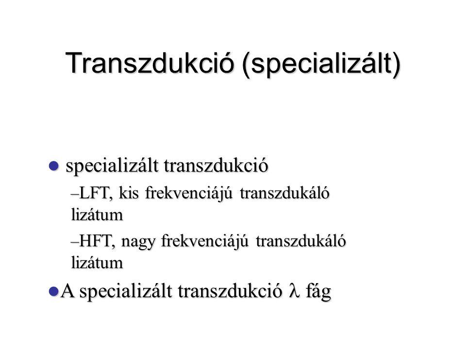Transzdukció (specializált) specializált transzdukció specializált transzdukció – LFT, kis frekvenciájú transzdukáló lizátum – HFT, nagy frekvenciájú