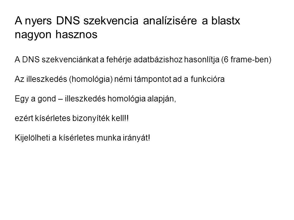 A nyers DNS szekvencia analízisére a blastx nagyon hasznos A DNS szekvenciánkat a fehérje adatbázishoz hasonlítja (6 frame-ben) Az illeszkedés (homoló
