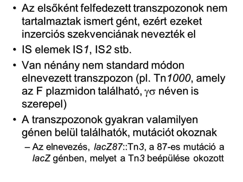 Az elsőként felfedezett transzpozonok nem tartalmaztak ismert gént, ezért ezeket inzerciós szekvenciának nevezték elAz elsőként felfedezett transzpozonok nem tartalmaztak ismert gént, ezért ezeket inzerciós szekvenciának nevezték el IS elemek IS1, IS2 stb.IS elemek IS1, IS2 stb.