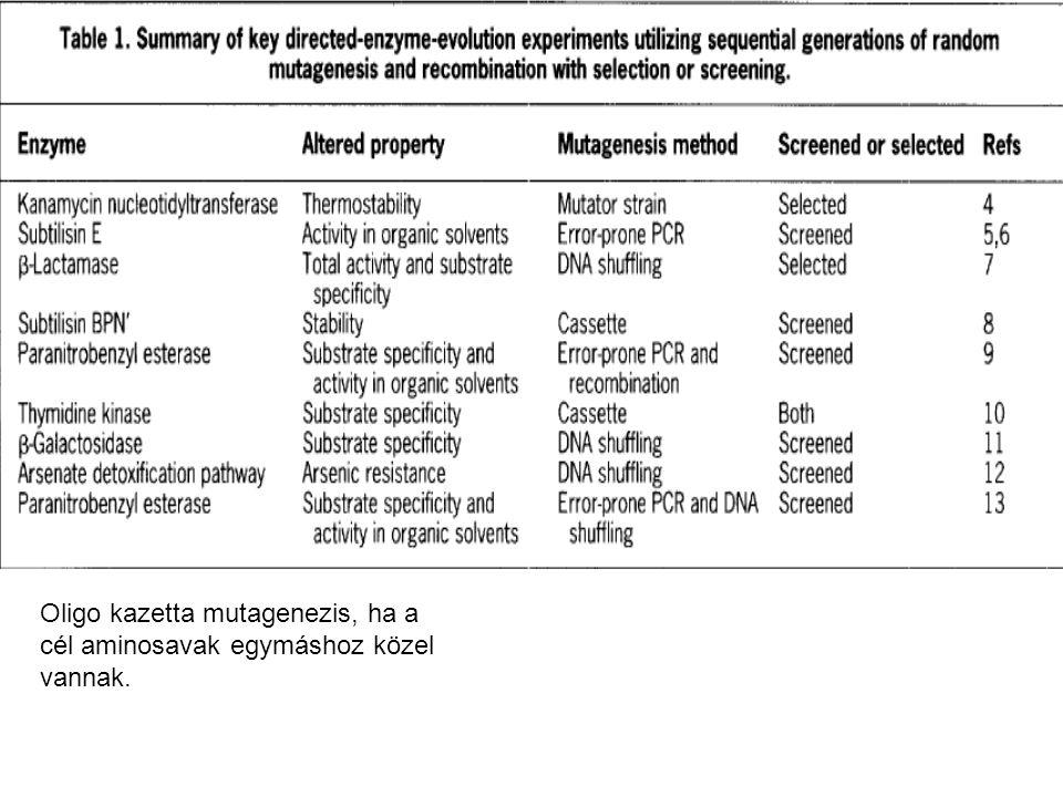 Oligo kazetta mutagenezis, ha a cél aminosavak egymáshoz közel vannak.